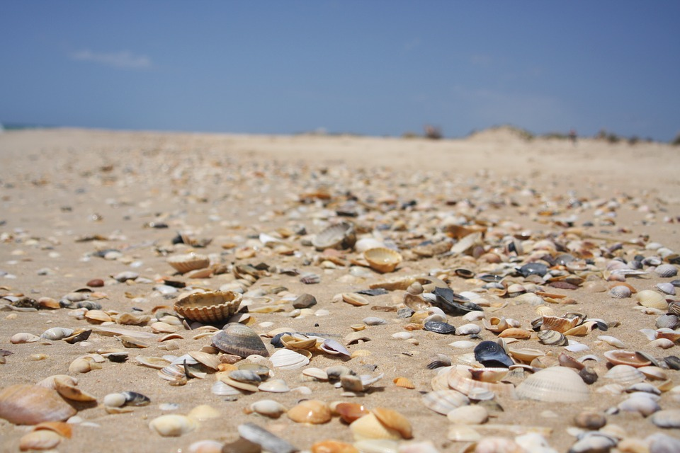 algarve mappa spiagge